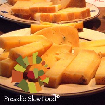 cibo-formaggio