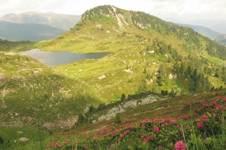 Val Trigona