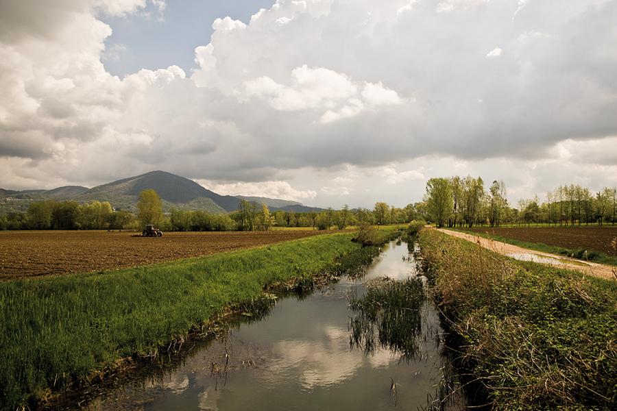 campagna tra Buja e Artegna [foto Ulderica Da Pozzo]