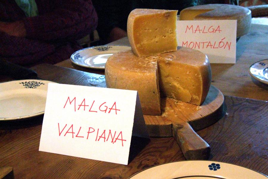 degustazione comparata delle diverse malghe che producono il formaggio del Presìdio