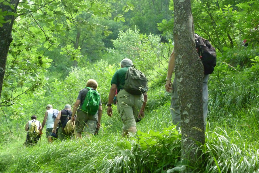 escursione guidata nella natura